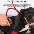 Peritoneoperikardiale Diaphragmahernie bei Hund und Katze