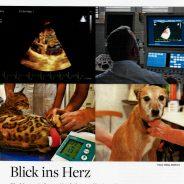 """1. September 2018 – Praxisportrait in der Zeitschrift """"Der Praktische Tierarzt"""""""